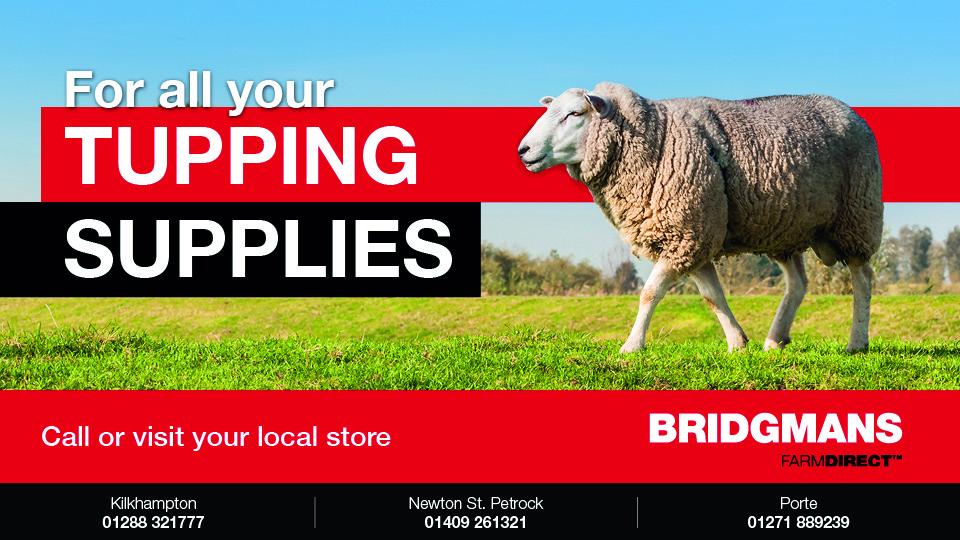 home - Bridgmans Farm Direct - Devon & Cornwall Agricultural
