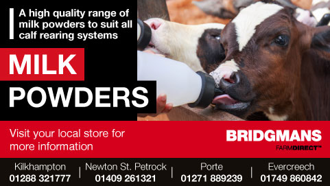 Bridgmans Milk Powders